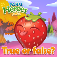 Strawberry True or false