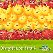 Cropsies on Tour Spain