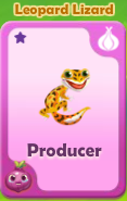 Producer Leopard Lizard