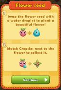 Flower seed rule