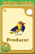Producer Golden Oriole A
