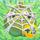 Apple under cobweb on grass 3x