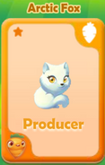 Producer Arctic Fox