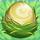 Alligator nest on grass