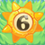 Sun bomb 6 on grass