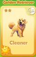 Cleaner Golden Retriever