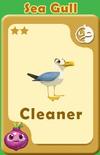 Cleaner Sea Gull A