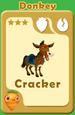 Cracker Donkey A