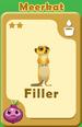 Filler Meerkat A