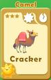 Cracker Camel A