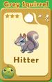 Hitter Grey Squirrel A
