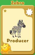 Producer Zebra A