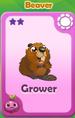 Grower Beaver