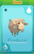 Producer Goat
