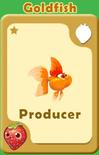 Producer Goldfish A