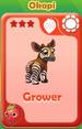 Grower Okapi