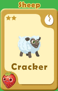 Cracker Sheep A