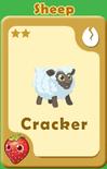 Cracker Sheep A