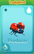 Producer Ladybird