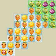 36=(4x2-6x2-5x2-4-2) L146