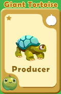Producer Giant Tortoise A