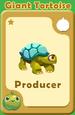 Producer Giant Tortoise A