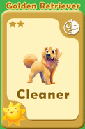 Cleaner Golden Retriever A