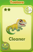 Cleaner Tuatara
