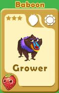 Grower Baboon A