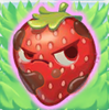 Strawberry grumpy on grass
