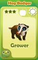 Grower Hog Badger