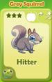 Hitter Grey Squirrel