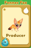 Producer Fennec Fox A
