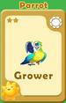 Grower Parrot A