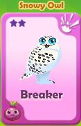Breaker Snowy Owl