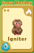 Igniter Snow Monkey A