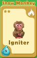 Igniter Snow Monkey A