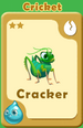 Cracker Cricket A