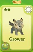 Grower Wolf