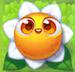 Flower 3-stage