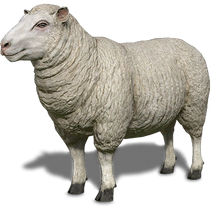 FS19 Animal-SheepWhite