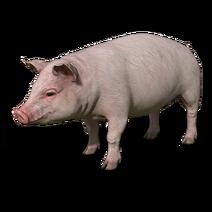 FS19 Animal-PigPink