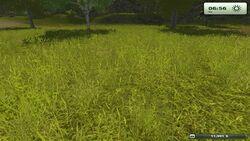 FarmingSimulator2013Game 2013-01-08 12-22-26-69