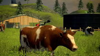 99 farming simulator 2013 new screenshot 013