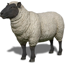 FS19 Animal-SheepBlackWhite
