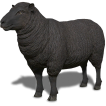 FS19 Animal-SheepBlack