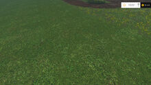 Grass 3 Stages FS15