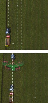 FS17 Windrowers Grass