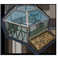 Lizard-greenhouse03