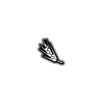 Barley FS15
